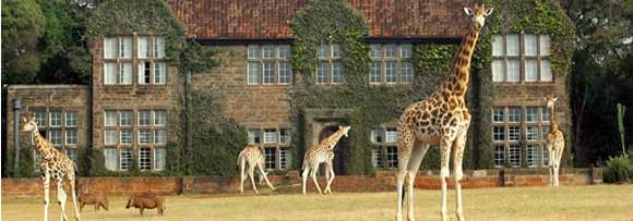 giraffe-manor-Nairobi-Kenya-long